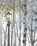 Ο ηλιακός δίσκος μέσω του γυαλιού του λαμπτήρα οδών που περιβάλλεται από το βισμούθιο Στοκ εικόνες με δικαίωμα ελεύθερης χρήσης