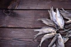 Ο θεραπευμένος κριός ψαριών είναι δεμένος με ένα σχοινί στοκ εικόνες με δικαίωμα ελεύθερης χρήσης