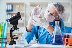Ο θηλυκός ερευνητής επιστημόνων που κάνει τα πειράματα στο εργαστήριο Στοκ εικόνες με δικαίωμα ελεύθερης χρήσης