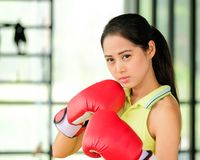 Ο θηλυκός μπόξερ φορά τα κόκκινα γάντια και τις ασκήσεις στη γυμναστική στοκ φωτογραφία με δικαίωμα ελεύθερης χρήσης