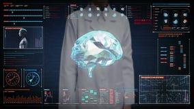 Ο θηλυκός γιατρός σχετικά με την οθόνη, εγκέφαλος συνδέει τις ψηφιακές γραμμές στο ταμπλό ψηφιακής επίδειξης, που επεκτείνει την  διανυσματική απεικόνιση