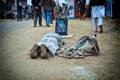 Ο θιασώτης Krishna προσεύχεται Στοκ εικόνα με δικαίωμα ελεύθερης χρήσης