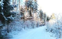 οδικός ηλιόλουστος χειμώνας Στοκ Φωτογραφίες