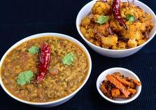 Ο ινδικός χορτοφάγος ξυστρίζει Στοκ φωτογραφία με δικαίωμα ελεύθερης χρήσης