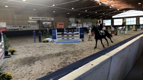 Ο ιππικός αθλητισμός, άλογο που πηδά, παρουσιάζει άλμα, η ιππασία η φωτογραφία φιλμ μικρού μήκους