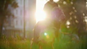 Ο ιρλανδικός ρυθμιστής φυλής σκυλιών που τρέχει μακριά τον οικοδεσπότη του που παίζει στη χλόη στο θερινό ηλιοβασίλεμα φιλμ μικρού μήκους