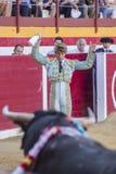 Ο ισπανικός ταυρομάχος Manuel Escribano που βάζει τις σημαίες κατά τη διάρκεια του α στοκ εικόνα