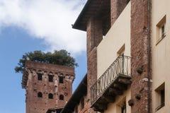 Ο ιστορικός μεσαιωνικός πύργος Guinigi με τα δρύινα δέντρα ακροποταμιών στην κορυφή, Lucca, Τοσκάνη, Ιταλία, από κάτω από Στοκ Φωτογραφία