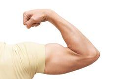 Ο ισχυρός αρσενικός βραχίονας παρουσιάζει δικέφαλους μυς Φωτογραφία που απομονώνεται στο λευκό Στοκ Φωτογραφία