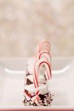 Ο κάλαμος και Marshmallow καραμελών Χριστουγέννων μεταχειρίζονται Στοκ Εικόνες