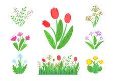Ο κήπος άνοιξη ανθίζει το διάνυσμα με τα ανθίζοντας σύνορα χλόης Απλή απεικόνιση ανθοδεσμών εγκαταστάσεων Στοιχεία φύσης άνοιξης ελεύθερη απεικόνιση δικαιώματος