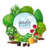 Ο κήπος φυτεύει την απεικόνιση πλαισίων διανυσματική απεικόνιση