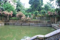 Ο κήπος Baldha είναι ένας από τους παλαιότερους βοτανικούς κήπους στο Μπανγκλαντές Ο κήπος είναι εμπλουτισμένος με τα σπάνια είδη στοκ εικόνες