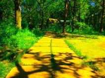Ο κίτρινος δρόμος τούβλου ο μάγος oz Στοκ Εικόνα