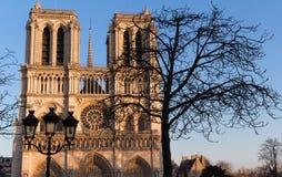 Ο καθεδρικός ναός της Notre Dame στην ηλιόλουστη ημέρα, Παρίσι, Γαλλία Στοκ φωτογραφίες με δικαίωμα ελεύθερης χρήσης