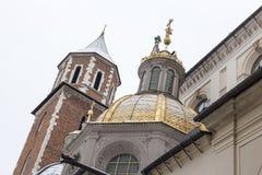 Ο καθεδρικός ναός wawel στοκ φωτογραφίες με δικαίωμα ελεύθερης χρήσης