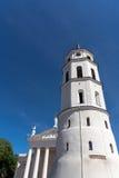 Ο καθεδρικός ναός Vilnius Στοκ εικόνες με δικαίωμα ελεύθερης χρήσης