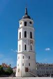 Ο καθεδρικός ναός Vilnius Στοκ Φωτογραφίες