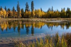 ο καθρέφτης λιμνών Στοκ Φωτογραφίες