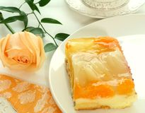 ο καρπός κέικ αυξήθηκε Στοκ Εικόνες