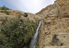 Ο καταρράκτης στο εθνικό πάρκο Ein Gedi Στοκ Φωτογραφία