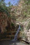 Ο καταρράκτης στο εθνικό πάρκο Ein Gedi Στοκ φωτογραφία με δικαίωμα ελεύθερης χρήσης