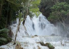 Ο καταρράκτης Si Kuang κουρελιών είναι ένα δημοφιλές τουριστικό αξιοθέατο σε Luang Prabang στοκ φωτογραφία με δικαίωμα ελεύθερης χρήσης