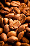 ο καφές περιέχει τη φωτογραφία πλέγματος εικόνας σιταριού κλίσης στοιχείων σχεδίου ρεαλιστική Στοκ Φωτογραφίες