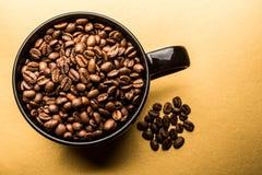 ο καφές που έρχεται αφήνει έξω το μίσχο σπόρων φυτών Στοκ φωτογραφία με δικαίωμα ελεύθερης χρήσης