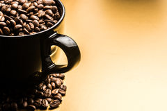 ο καφές που έρχεται αφήνει έξω το μίσχο σπόρων φυτών Στοκ Εικόνες