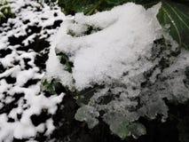 Ο καφετής άργιλος κάτω από τη βροχή μειώνεται και χιόνι Στοκ Εικόνες