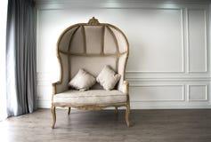 Ο καφετής καναπές με το luxurioius κοιτάζει Στοκ Φωτογραφίες
