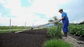 Ο καλλιεργητής ανυψώνει τον πίνακα που χρησιμοποιήθηκε για να χωρίσει τον κήπο στα τμήματα απόθεμα βίντεο