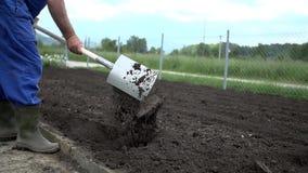 Ο καλλιεργητής χρησιμοποιεί το φτυάρι για να κάνει μερικές τρύπες στον οργωμένο τομέα απόθεμα βίντεο
