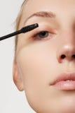 Ο καλλιτέχνης σύνθεσης εφαρμόζει eyelashes τη σύνθεση όμορφη γυναίκα προσώπου Τέλεια σύνθεση Στοκ φωτογραφίες με δικαίωμα ελεύθερης χρήσης