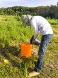 Ο κηπουρός αναμιγνύει το ζιζανιοκτόνο που προετοιμάζεται για τον ψεκασμό των ζιζανίων στοκ φωτογραφίες με δικαίωμα ελεύθερης χρήσης