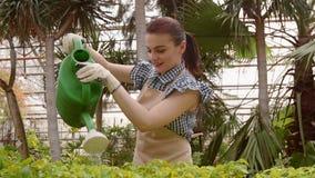 Ο κηπουρός γυναικών εργάζεται στον κήπο, τα πράσινα σπορόφυτα ποτίσματος με το πότισμα μπορούν φιλμ μικρού μήκους