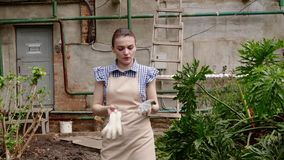 Ο κηπουρός γυναικών περπατά στο θερμοκήπιο που ικανοποιεί με την εργασία της και αναβάλλει τα γάντια της φιλμ μικρού μήκους