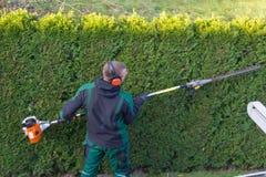 Ο κηπουρός κόβει έναν φράκτη στοκ εικόνες με δικαίωμα ελεύθερης χρήσης