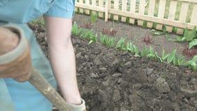 Ο κηπουρός σκάβει στον κήπο του με ένα φτυάρι φιλμ μικρού μήκους