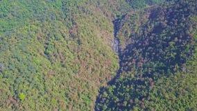 Ο κηφήνας κρεμά επάνω από τη βαθιά ζούγκλα με το φαράγγι ποταμών στην ορεινή περιοχή απόθεμα βίντεο