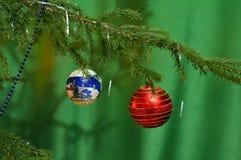 Ο κλάδος του χριστουγεννιάτικου δέντρου είναι διακοσμημένος με δύο σφαίρες: κόκκινος και μπλε με ένα σχέδιο στοκ εικόνα