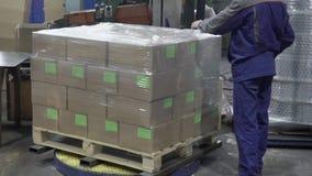 Ο κλάδος των κιβωτίων συσκευάζεται με το polyfirm στις εγκαταστάσεις απόθεμα βίντεο