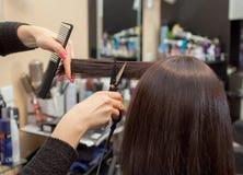 Ο κομμωτής κάνει ένα κούρεμα με το καυτό ψαλίδι της τρίχας σε ένα νέο κορίτσι, ένα brunette Στοκ εικόνες με δικαίωμα ελεύθερης χρήσης