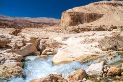 Ο κολπίσκος στην κοιλάδα Wadi Hasa στην Ιορδανία Στοκ εικόνες με δικαίωμα ελεύθερης χρήσης