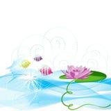 ο κρίνος λουλουδιών ψα&r Στοκ εικόνες με δικαίωμα ελεύθερης χρήσης