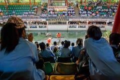 Ο κροκόδειλος παρουσιάζει με τους θεατές στοκ φωτογραφίες