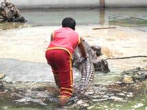 Ο κροκόδειλος παρουσιάζει στο αγρόκτημα κροκοδείλων στοκ εικόνες με δικαίωμα ελεύθερης χρήσης