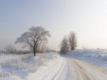 Ο κρύος χειμώνας στην περιοχή της Μόσχας Στοκ Φωτογραφία