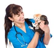 Ο κτηνίατρος κρατά τρία γατάκια η ανασκόπηση απομόνωσε το λευκό στοκ εικόνα